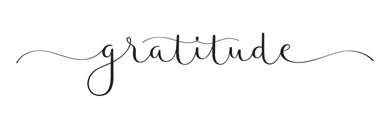 Foto op Canvas Positive Typography GRATITUDE vector black brush calligraphy banner with swashes