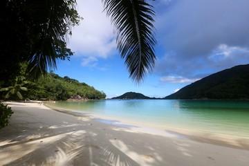 Papiers peints Palmier silhouette de palmier sur lagon des Seychelles