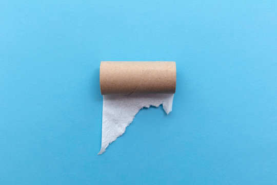 Empty toilet paper roll on a blue background