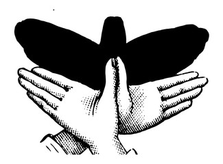 Hand-shadow of Butterfly, vintage engraving.