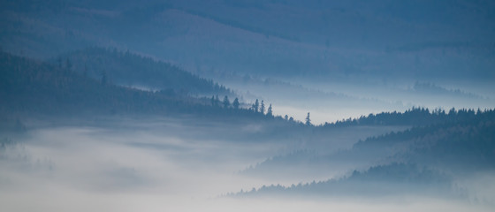 Photo sur Aluminium Taupe Blue mountains in morning mist