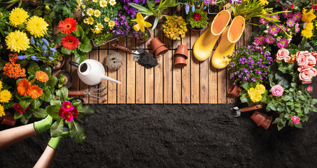 Photo sur Plexiglas Jardin Gardening Tools on Soil Background. Spring Garden Works Concept