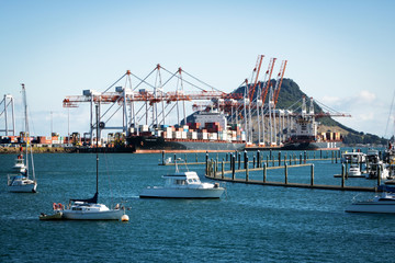 TAURANGA, NEW ZEALAND - MARCH 6, 2020: Cargo ships docked into Tauranga Harbour Port waiting for the adjacent container cranes to load. Mount Maunganui in the background.