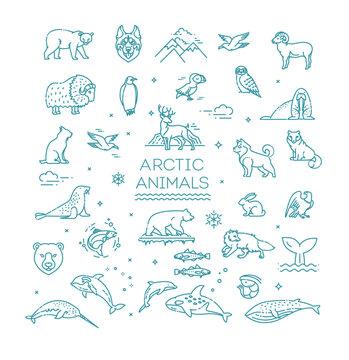 Set of linear vector Arctic animals