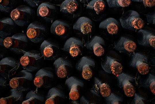 Dusty wine bottles on shelfs in cellars of winery
