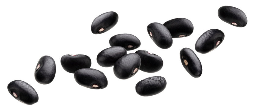 Falling black beans isolated on white background