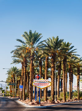welcome to fabulous las vegas sign in front of palm trees, Las Vegas, Nevada