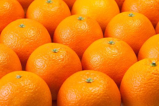 オレンジ orange
