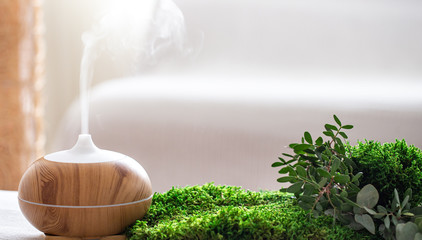 Modern Aromatic oil diffuser with fresh herbs .