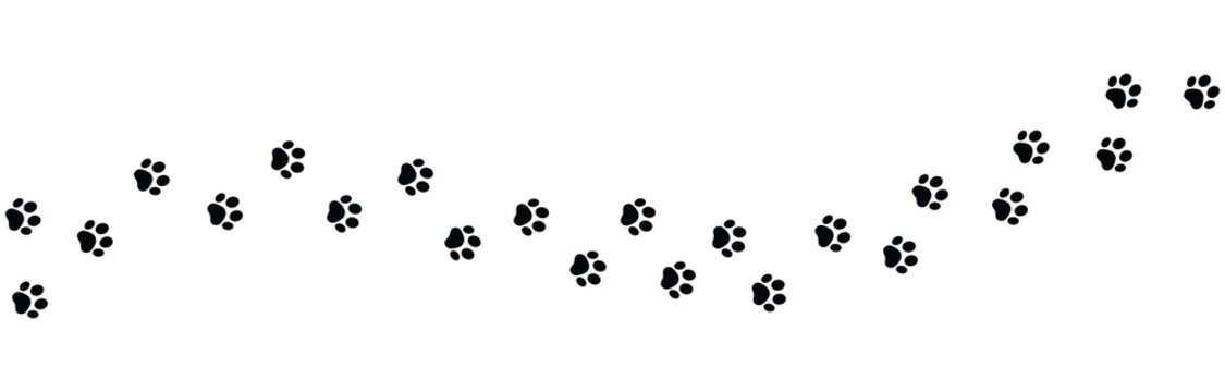 Paw vector foot trail print on white background. foot trail cat or Dog, path pattern animal tracks, isolated on white background
