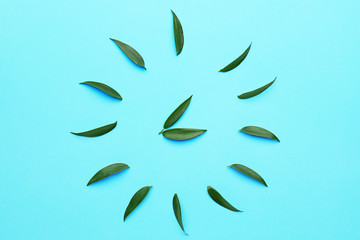 Wall Mural - Creative clock made of green leaves on color background