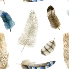 Watercolor feathers on a white background.  А seamless pattern. A concept for background, fabric, wallpaper and other printed products
