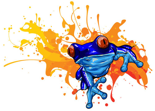 vector illustration tropical red eyed tree frog