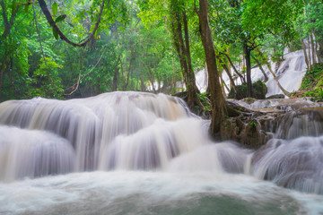 Photo sur Aluminium Kaki Waterfall scene at Pha Tad Waterfalls in rainforest at the Khuean Srinagarindra National Park Kanchanaburi.