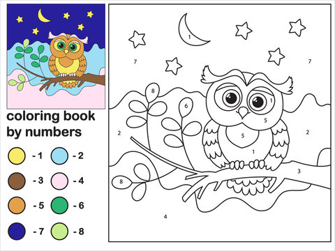 Cute owl and flowers vector coloring by numbers for kids. An educational coloring game will increase your imagination. Increase concentration.