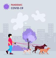 Boy walking dogs in city park vector
