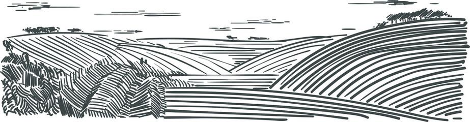 Obraz Piękny widok wiejsci z polami i łakami rysunek odreczny wektorowy - fototapety do salonu