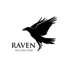 raven fly logo icon vector design