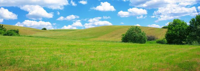 Foto auf Leinwand Pistazie Summer field with blue sky and white big clouds.