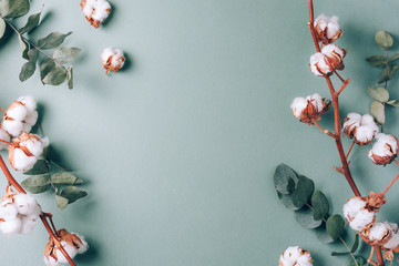 Printed roller blinds Floral Flowers composition. Frame made of cotton flowers and eucalyptus branches on pastel blue background. Flat lay, top view. Frame with copy space