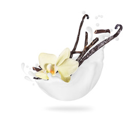Dried vanilla sticks with flower in milk splashes, isolated on a white background.