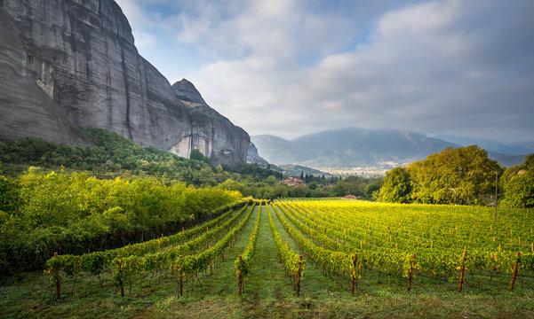 Panorama view of Kalambaka with beautiful vineyards.