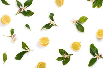 Wall Mural - Lemon and blossom,  flat lay.