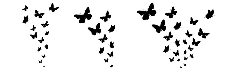 Set of vector silhouette of butterflies on white background. Symbol of nature and insect.