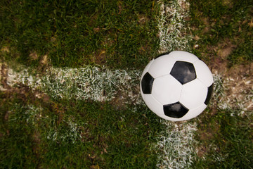 Classic soccer ball, typical black and white pattern, placed on the white marking line of the stadium turf in a rainy day. Traditional football ball on the green grass lawn with copy space.