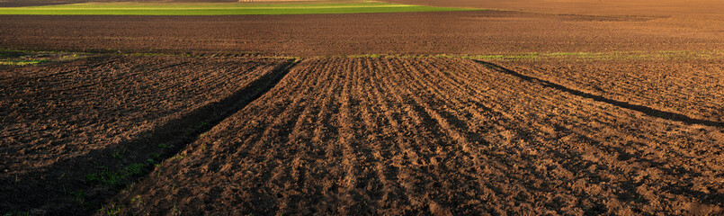 panorama of plowed field, lines along rural beds and green fields, land for sale Fotomurales