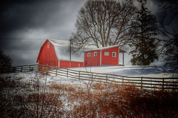 Catlin Red and Fence I