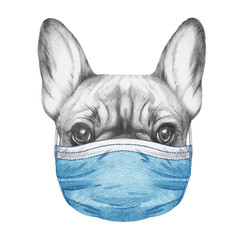 Portrait of French Bulldog with face mask. Hand-drawn illustration.