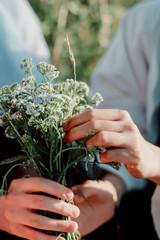 Keuken foto achterwand Bonsai White wildflowers in the hands of a girl on the field