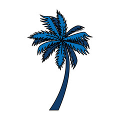 Wall Mural - tree palm exotic isolated icon vector illustration design