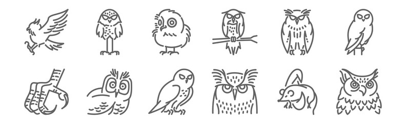 Foto op Aluminium Uilen cartoon set of 12 owl icons. outline thin line icons such as great horned owl, long ea owl, bird of prey, owlet, burrowing