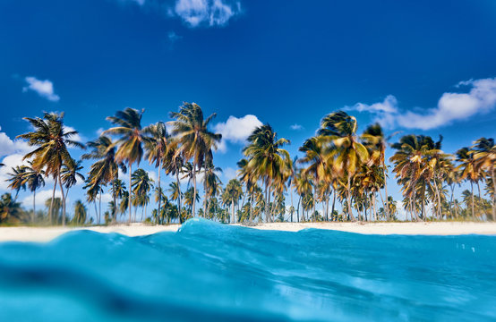 Tropical island. View of the beach from the water.