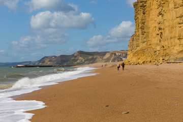 Wall Mural - Jurassic coast beach walk Dorset England UK between Freshwater and West Bay
