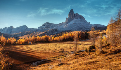 Fotomurales - Awesome alpine highland in sunny day. Wonderful Dolomites Alps during sunset. Alpine valley under sunlight. Beautifyl Nature landscape with rock mount and forest glowing sunlit. Dolomites Alps. Italy