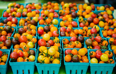 multi colored tomatoes for sale at a farmers market