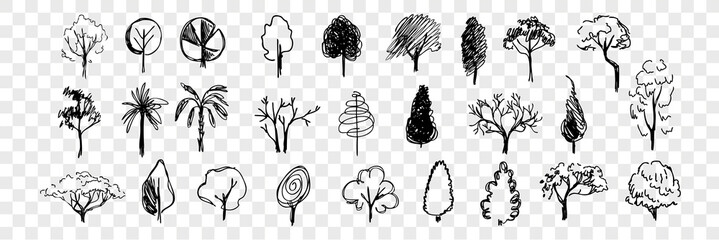 Hand drawn trees doodle set collection Fototapete