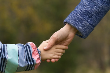 adult holding a hand of child in late autumn