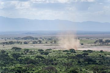 Photo sur Aluminium Kaki Blick bei einer Safari