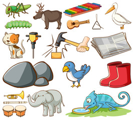 Poster Kids Large set of different animals and other items on white background