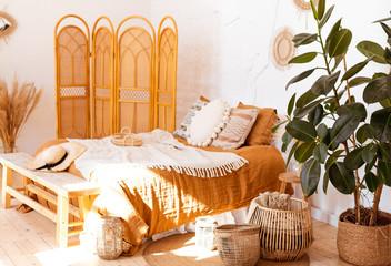 Ficus elastica plant(rubber tree) in boho bedroom interior