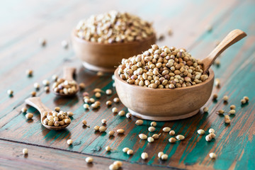 Organic Dried coriander seeds in wooden bowl with spoon on colored rustic background.