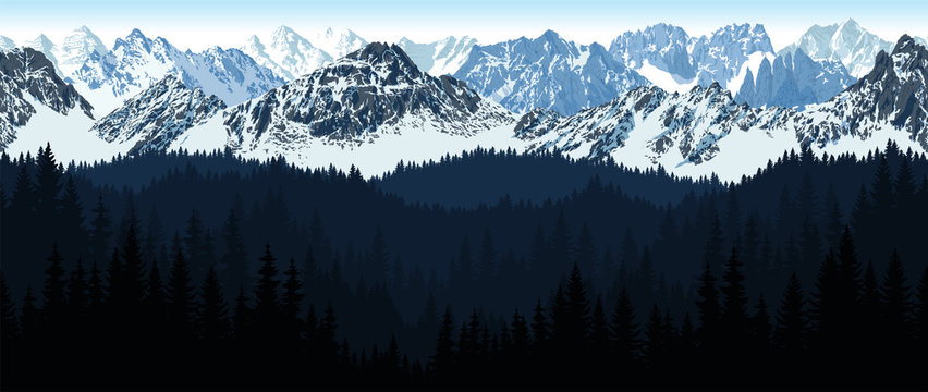 vector seamless Alaska Mountain with woodland background illustration
