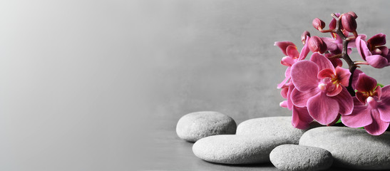 Keuken foto achterwand Spa Composition with spa stones, orchid pink flower on grey background.