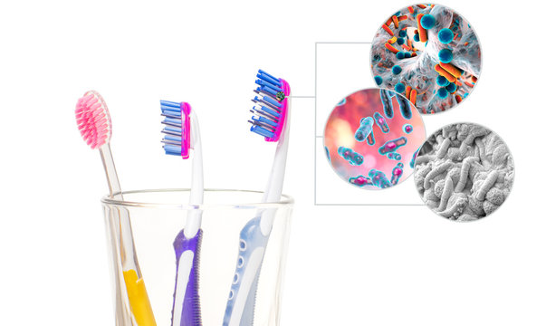 Dental hygiene. Tooth brushes with bacteria in glass