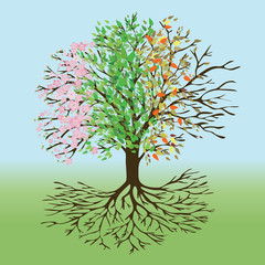 A tree of life with pink blossom and flower butts, green leafs, autumn leafs an winter branches