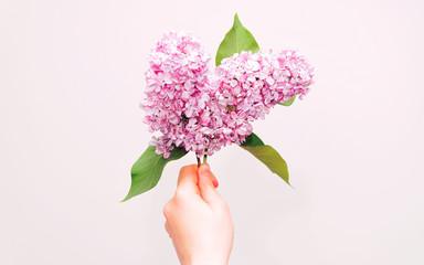 Foto auf Acrylglas Flieder Twig of purple lilac flower
